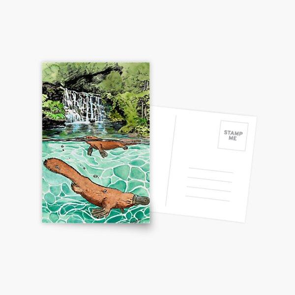 Platypus Falls Postcard
