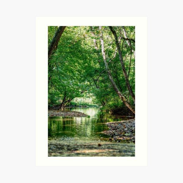 Greenery Water Escape Art Print