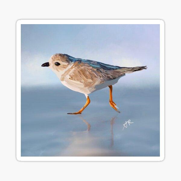 Bird Illustration Sticker