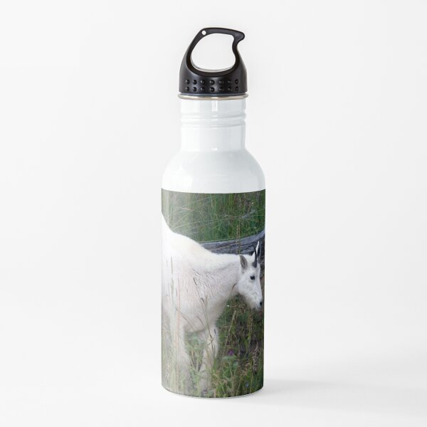 Watercolor Mountain Goat 22, Yellowstone, Wyoming Water Bottle