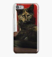 Soli the tortie cat #2 iPhone Case/Skin