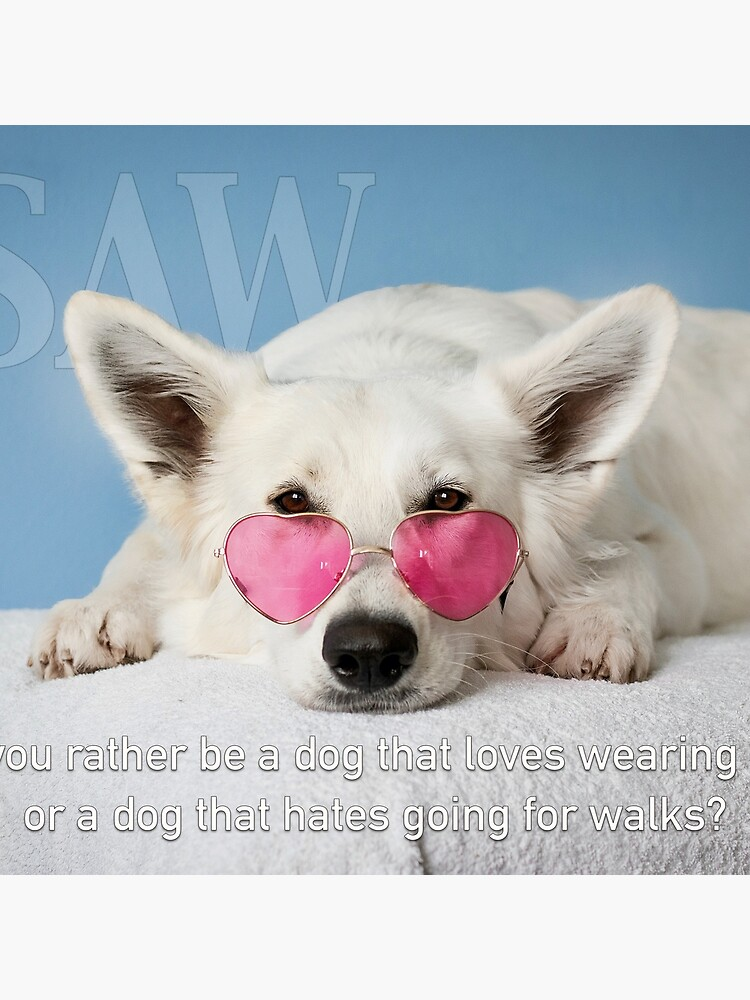 Loves Glasses or Hates Walks by iSAWcompany