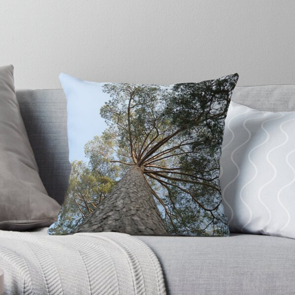 Up view of tree and sunlight effect Throw Pillow