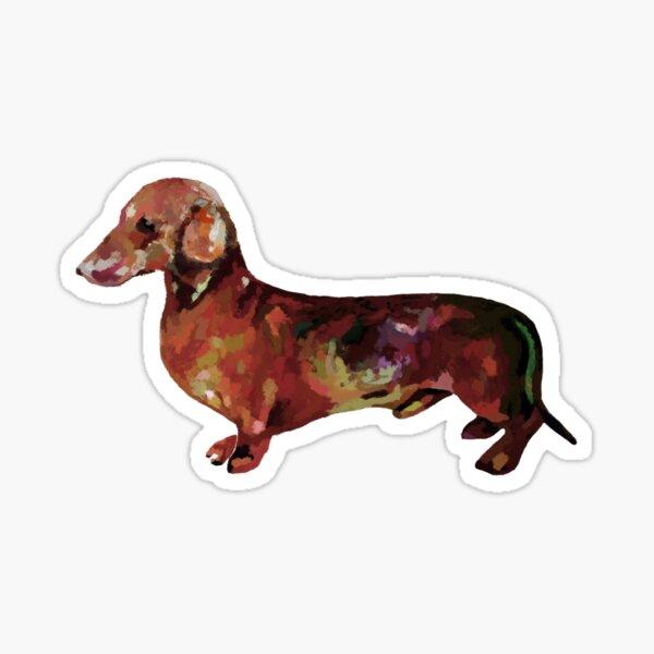 Dachshund dog realistic oil painting art Print  Sticker