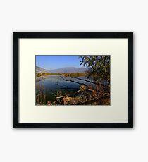 Ponds  Framed Print