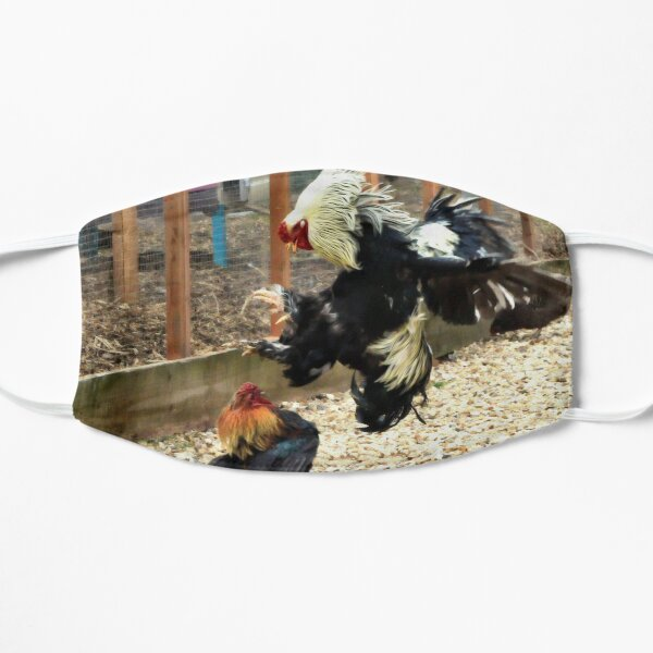 Cock fight Flat Mask