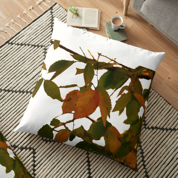Fall Early Colors 20 Floor Pillow
