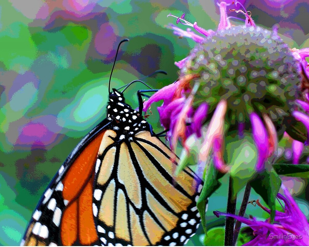 Butterfly Fantasyland by SmilinEyes