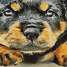 Impressinist Rottweiler Puppy Portrait in Vincent van Gogh Style by taiche