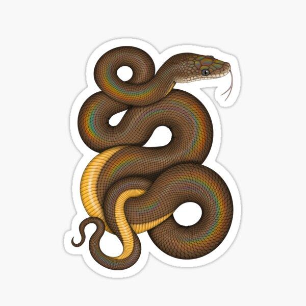Water Python Sticker