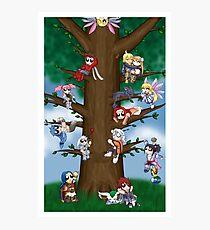 Let's Go Climb A Tree! Photographic Print