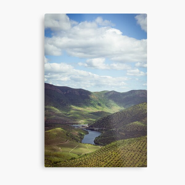Beautiful landscape of the Douro Valley, Portugal Metal Print