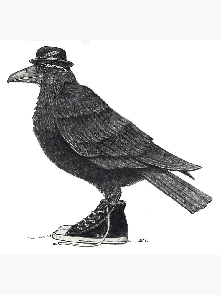 Cody Blackbird in high tops by JimsBirds