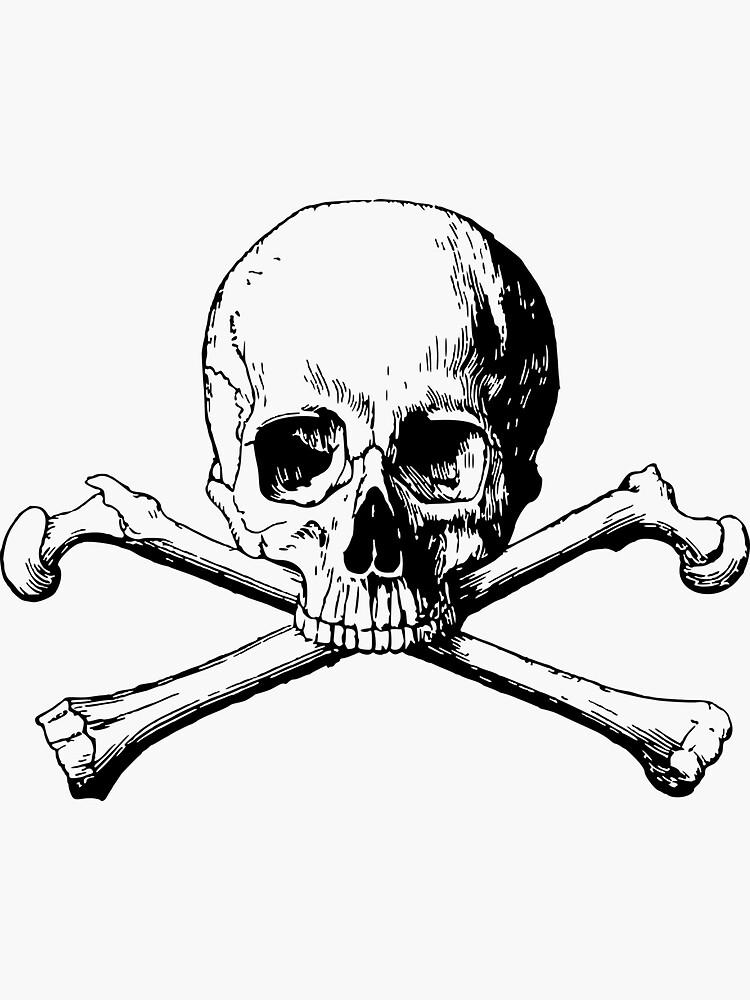 The Skull by SiddharthaMoon