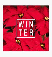 "Beautiful ""Winter"" Typography & Poinsettias Photographic Print"