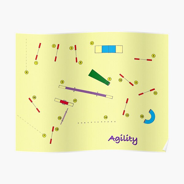 Agility Course Poster