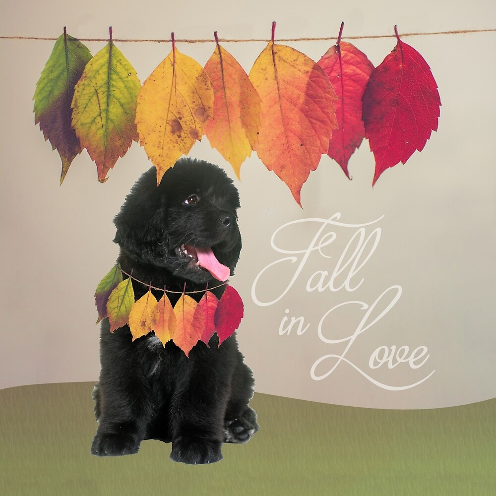 Fall in Love by Christine Mullis