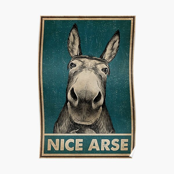 nice arse donkey poster Poster