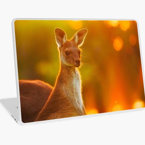 Sunset Joey, Yanchep National Park Laptop Skin