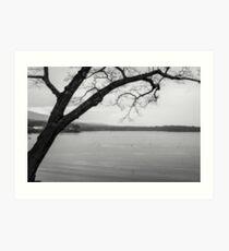 Black and White Camden, Maine  Art Print