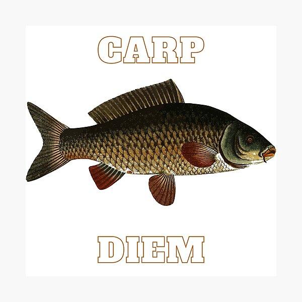 Carp Diem Carpe Diem Fishing Fish Photographic Print