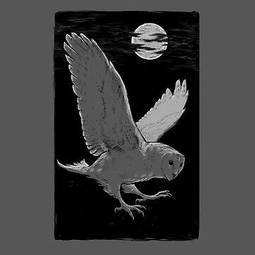 Midnight Flight by heliumash