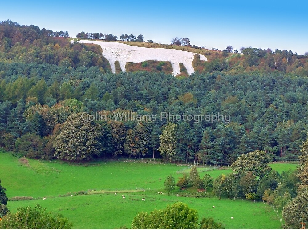 The White Horse - Kilburn  by Colin  Williams Photography