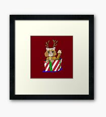 No Christmas for Kitty Framed Print