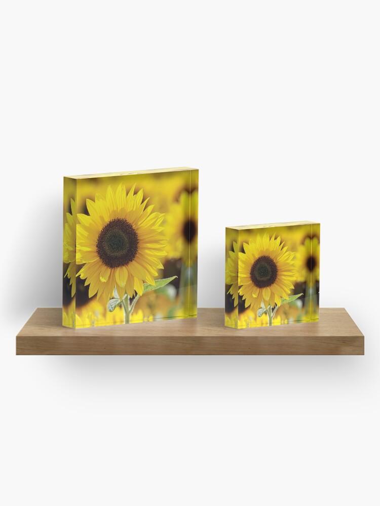 Alternate view of Sunflower Acrylic Block
