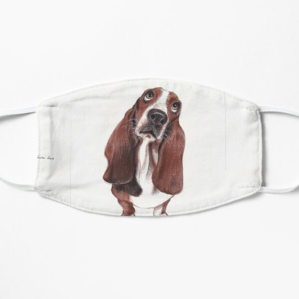 Beautiful Basset Hound Looking for a Forever Home Small Mask