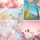 Spring Floral Sakura Collage Pink White Cherry Blossoms by Beverly Claire Kaiya