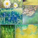 Floral Collage Aster Muscari Waterlily Bamboo Daffodil Park by Beverly Claire Kaiya