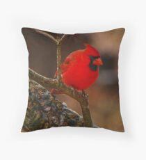 Portrait of a Redbird Throw Pillow