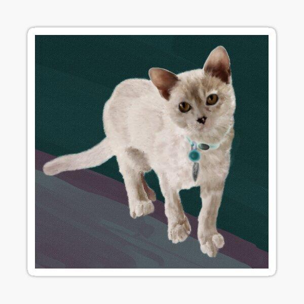 Agile Kitten Sticker