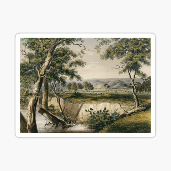 The City of Adelaide, from the Torrens near the Reed Beds  Sticker