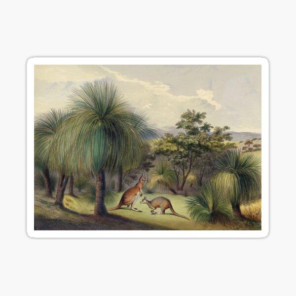 Grass trees at Yankallilla with the red kangaroo Sticker