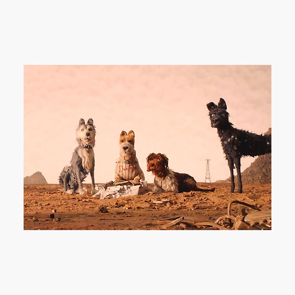 Fantastic Dogs Photographic Print