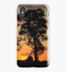 Silverdale Sunset Collection (10) iPhone Case/Skin