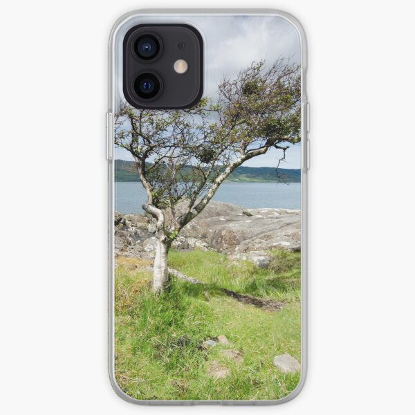 Loch Na Keal iPhone Soft Case