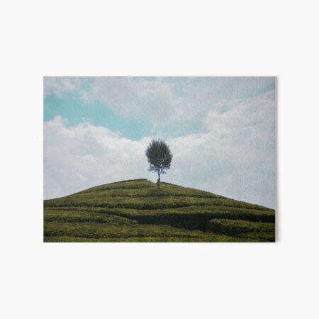 A Lonely Tree Art Board Print