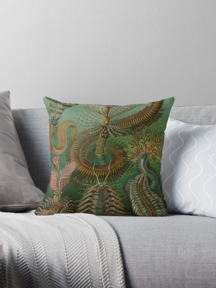 Haeckel Chaetopoda Throw Pillow By Indigoferal Redbubble