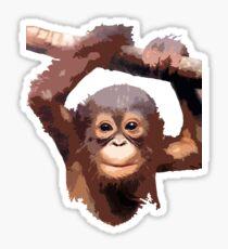 Orangutan Sticker