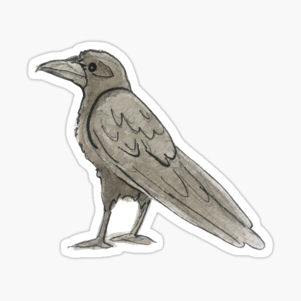 Raven Illustration in Watercolor Sticker