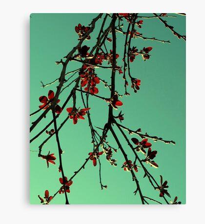 Orientique Canvas Print