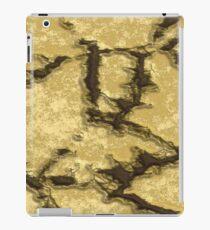 Cracks iPad Case/Skin