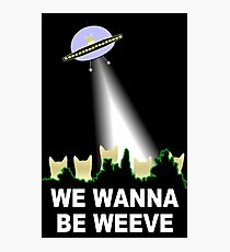 X-Files Cats Wanna Be Weeve Photographic Print