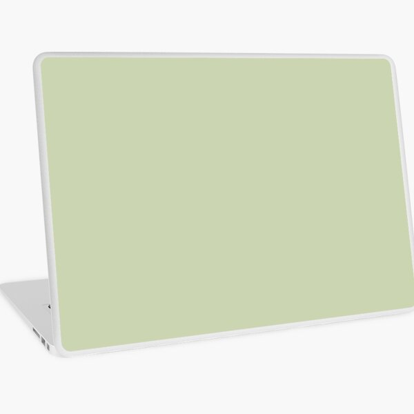 PLAIN SOLID COLOR SEAFOAM GREEN FOR A BREEZY BEACH DECOR AND CLOTHING AESTHETIC Laptop Skin