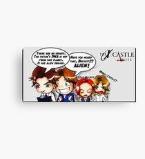 Xcastle files 2 Canvas Print