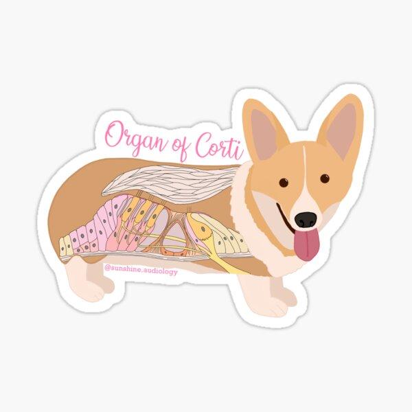Organ of Corgi... I mean Corti! Sticker