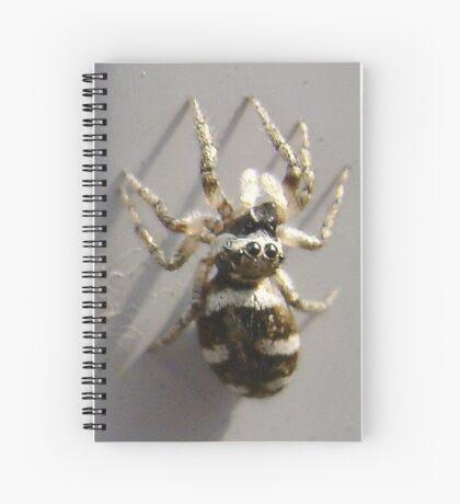 Spiderkin 1 Spiral Notebook